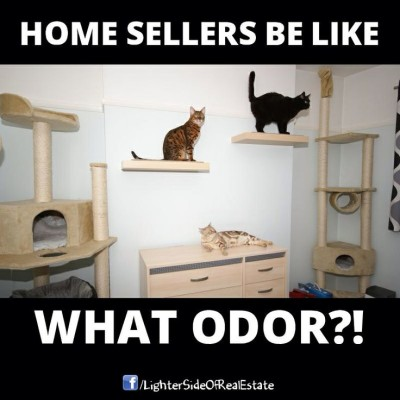 Home Sellers be like.. What Odor?