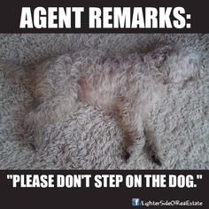 Agent Remarks